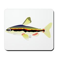 Golden Pencilfish tropical fish Amazon Mousepad