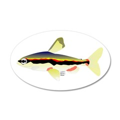 Golden Pencilfish tropical fish Amazon Wall Decal