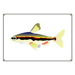 Golden Pencilfish tropical fish Amazon Banner