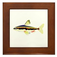 Golden Pencilfish tropical fish Amazon Framed Tile