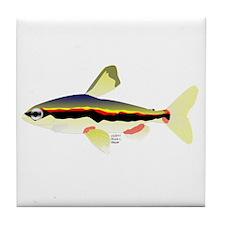 Golden Pencilfish tropical fish Amazon Tile Coaste