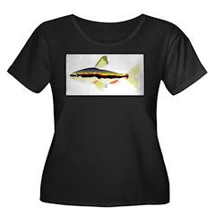 Golden Pencilfish tropical fish Amazon T