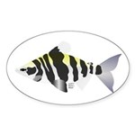 Highbacked Headstander tropical fish Sticker (Oval
