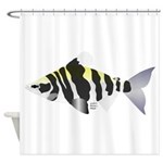 Highbacked Headstander tropical fish Shower Curtai