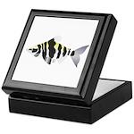 Highbacked Headstander tropical fish Keepsake Box