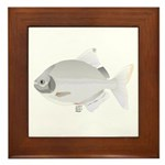 SIlver Dollar fish tropical Amazon river Framed Ti