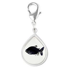 Black Pacu fish tropical Amazon Silver Teardrop Ch