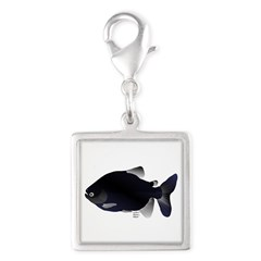 Black Pacu fish tropical Amazon Silver Square Char