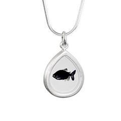 Black Pacu fish tropical Amazon Silver Teardrop Ne