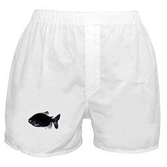 Black Pacu fish tropical Amazon Boxer Shorts
