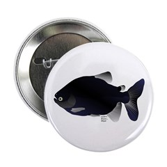 "Black Pacu fish tropical Amazon 2.25"" Button"