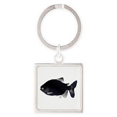 Black Pacu fish tropical Amazon Square Keychain
