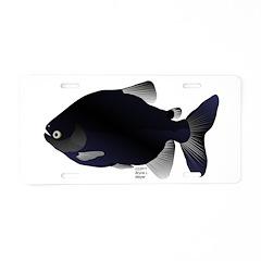 Black Pacu fish tropical Amazon Aluminum License P