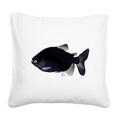 Black Pacu fish tropical Amazon Square Canvas Pill