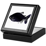 Black Pacu fish tropical Amazon Keepsake Box
