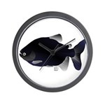 Black Pacu fish tropical Amazon Wall Clock