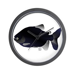 Black Pacu fish tropical Amazon Wall Clock