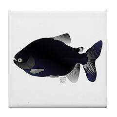 Black Pacu fish tropical Amazon Tile Coaster