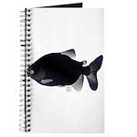Black Pacu fish tropical Amazon Journal