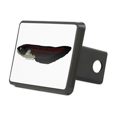 Electric Eel (Knifefish fish) Hitch Cover