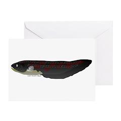 Electric Eel (Knifefish fish) Greeting Card