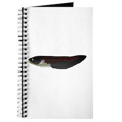Electric Eel (Knifefish fish) Journal
