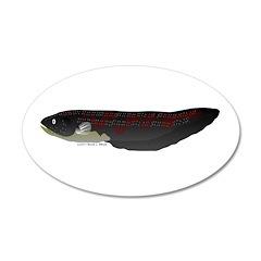 Electric Eel (Knifefish fish) Wall Decal