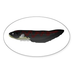 Electric Eel (Knifefish fish) Sticker (Oval 50 pk)