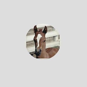 Foal with blaze Mini Button