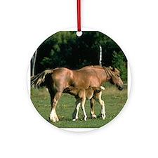 Nursing Foal Ornament (Round)