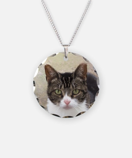 Tabby Cat Stare with Green Eyes Necklace