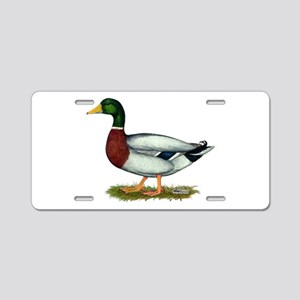 Mallard Duck Drake Aluminum License Plate