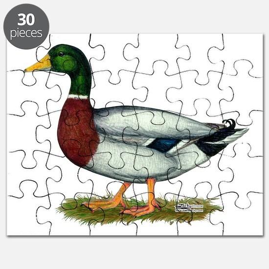 Mallard Duck Drake Puzzle