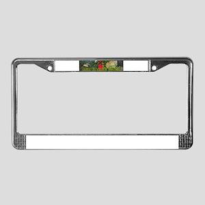 HXFFULL License Plate Frame
