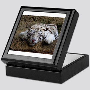 Sleeping White Tiger Keepsake Box