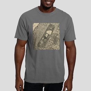 Vintage Central Park NYC Mens Comfort Colors Shirt