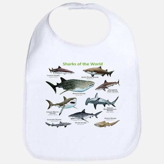 Sharks of the World Baby Bib