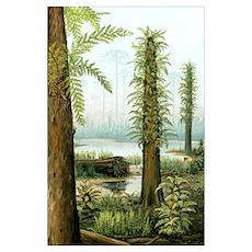 Cretaceous tree ferns, artwork Poster