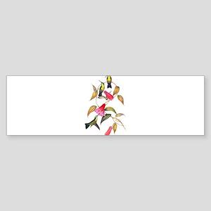 Hummingbirds Sticker (Bumper)
