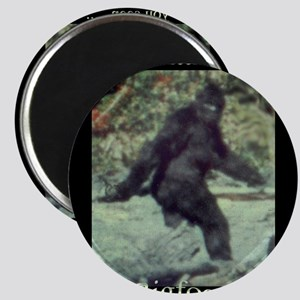 Have You Seen BIGFOOT? Magnet