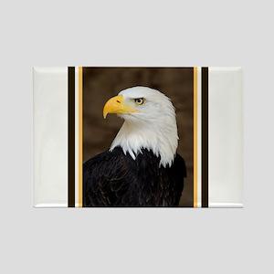 American Bald Eagle Rectangle Magnet