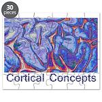 Cortical Concepts Puzzle