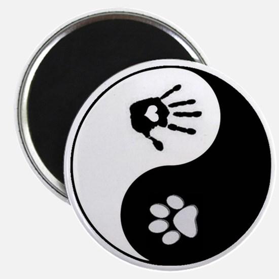 Cute Paw Magnet