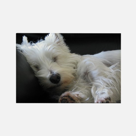 Westie Rectangle Magnet 2