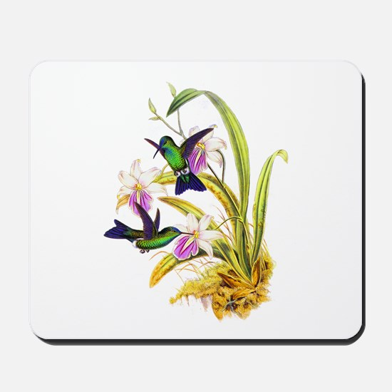 Hummingbirds Mousepad