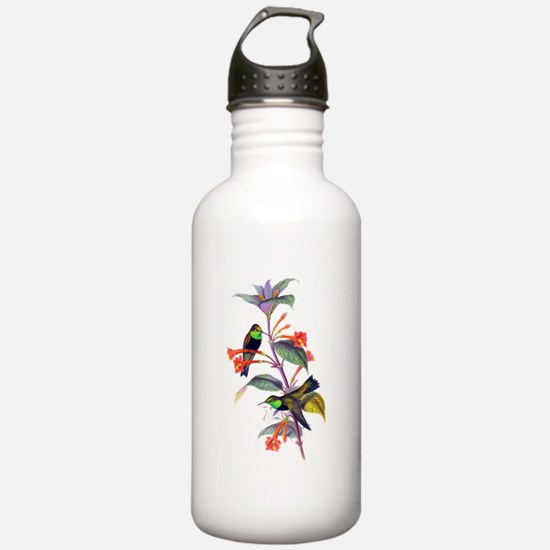 Hummingbirds Water Bottle