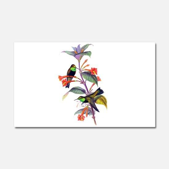 Hummingbirds Car Magnet 20 x 12