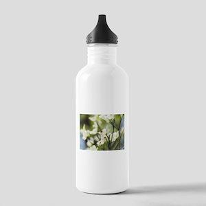 Blooming dogwood Water Bottle
