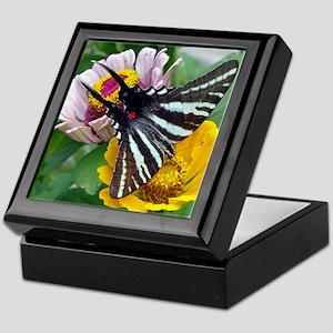 Zebra Swallowtail + Japanese Beetle Keepsake Box