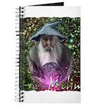 merlin the magician art illustration Journal